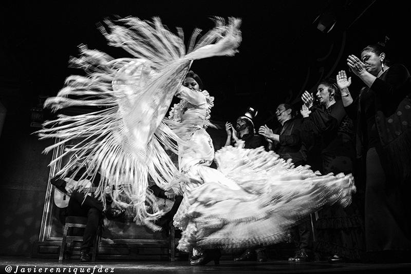 JAVIER E FERNANDEZ. Flamencosis